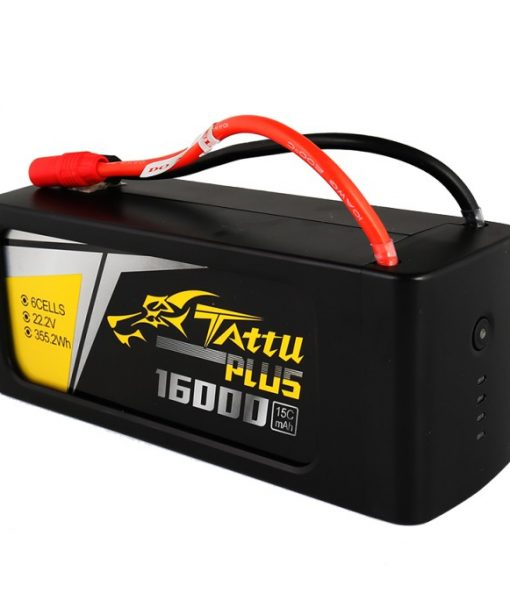 tattu_plus_16000-2